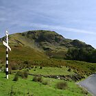 On the Road to Buttermere - Lake District by Marilyn Harris