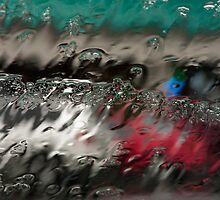 Windshield in the Rain by michaelgabriel