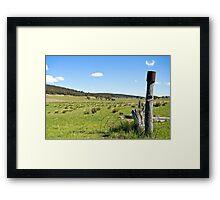 Jerangle Countryside Framed Print