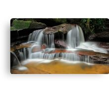 Falls of the Wilderness Canvas Print