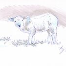Pencil Drawing of a Cute Lamb by MikeJory