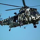 Westland Sea King HC4  ( ZF115 )  by mike  jordan.