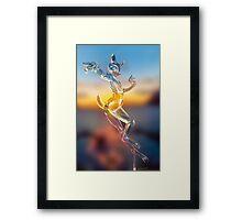 Crystal Deer Framed Print