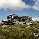 Rough Tor by mikebov