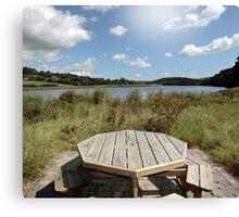 wild picnic bench Canvas Print