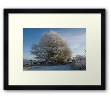 Haw frost Framed Print
