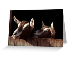 Two Goats looking out of stable. Greeting Card