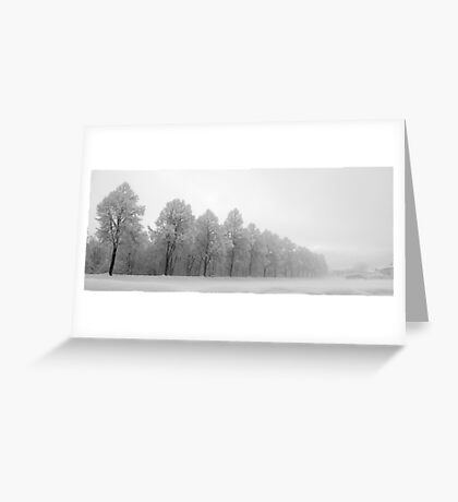 Christmas snow in Austria. Greeting Card