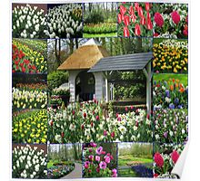 Wishing Well - Colourful Keukenhof Collage Poster