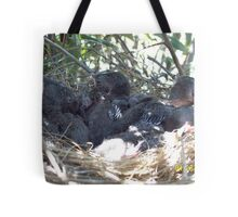 Babby blue jays Tote Bag