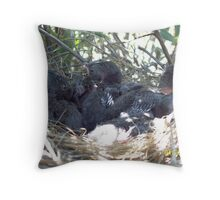 Babby blue jays Throw Pillow