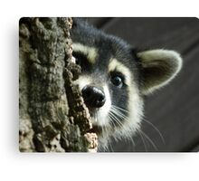 Busted! Canvas Print
