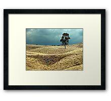 Field of Saddle Road Dreams Framed Print