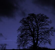 Dark Tree. by Forfarlass