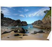 Pelican paradise ~ Seal Rocks, NSW Poster