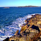 Coastal Maine by jasmith162