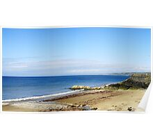 Sea shell beach New Quay Poster