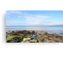 Sea Shell Beach Part 2 Canvas Print