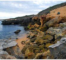 Beachport Limestone Crumble by George Petrovsky