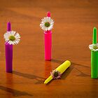 Flowers in Pen Lids by handyandypandy