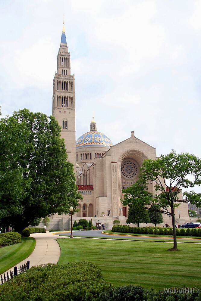 Basilica of the National Shrine of the Immaculate Conception II by WalnutHill