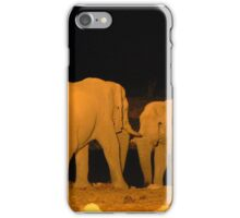 Night-time Rendezvous iPhone Case/Skin