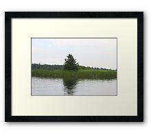 land on water Framed Print