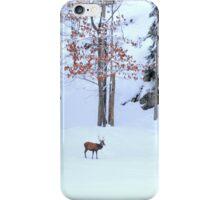 Winter Scene - Red Deer  iPhone Case/Skin