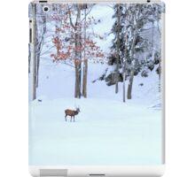 Winter Scene - Red Deer  iPad Case/Skin