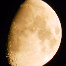 Moon Craters Galore by Sharon Woerner