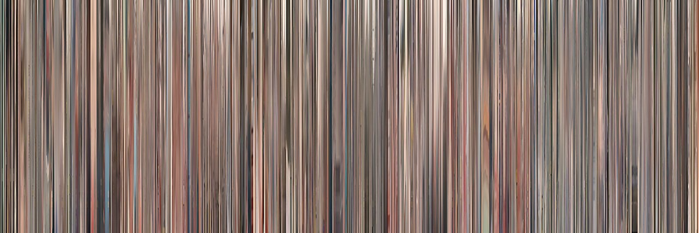 Moviebarcode: Senna (2010) by moviebarcode