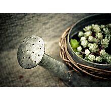 Mother's Garden Magic Photographic Print