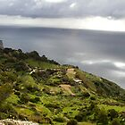 Dingli Cliffs, Malta by Michelle Lia