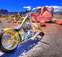 Chopper at Red Rock by Phillip Hardy