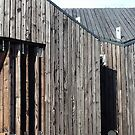 Wooden shack - near Falkirk, Scotland by armadillozenith