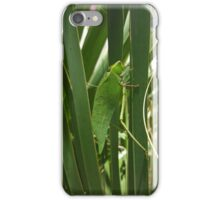 Katydid on a Palm Frond iPhone Case/Skin