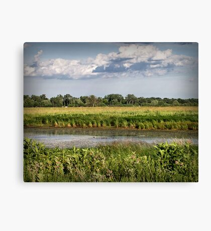 Rollins Savanah Canvas Print