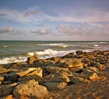 Washington Rocks #6. Flagler County. by chris kusik