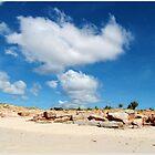 Cape Leveque by dozzam