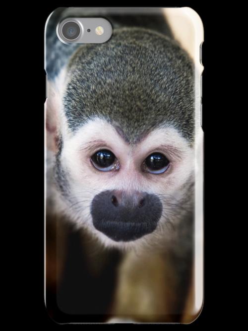 Squirrel monkey iPhone case by Martyn Franklin