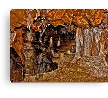 Florida Caverns #1. Marianna. Canvas Print
