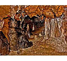Florida Caverns #1. Marianna. Photographic Print