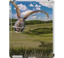 Whirly Gig Bunny iPad Case/Skin