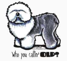 OES 'Who You Callin Old' by offleashart