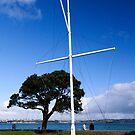 Auckland Mast by Zach Chadim