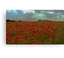 A Tribute To The Fallen Canvas Print