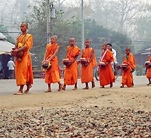 Morning monks line up. by Phil Bower