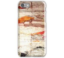 Tattered Wall iPhone Case iPhone Case/Skin
