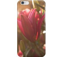 Summer flowers pink lily iPhone case iPhone Case/Skin