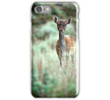 Fallow Deer dama dama case iPhone Case/Skin